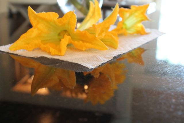 Squash Blossoms stuffed with Soft Cheese