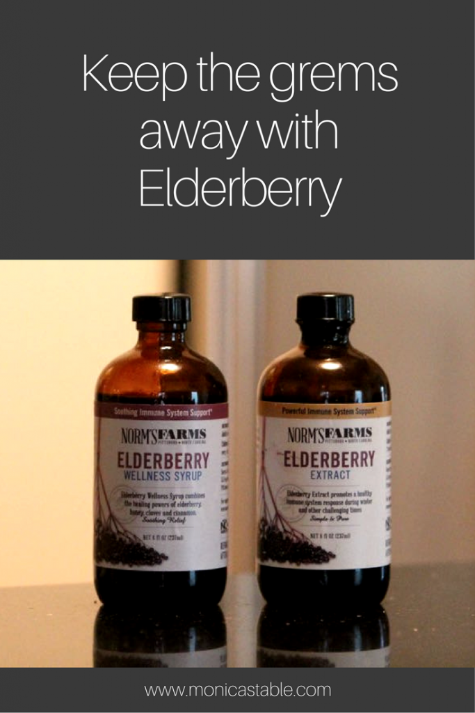 stay-healthy-with-the-immune-boost-of-elderberry